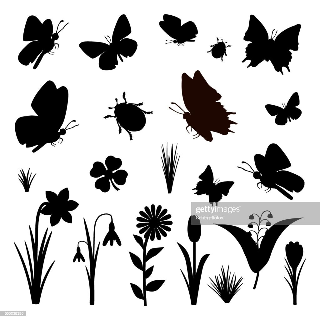 black butterfly flower silhouette isolated