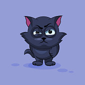 Black cat angry