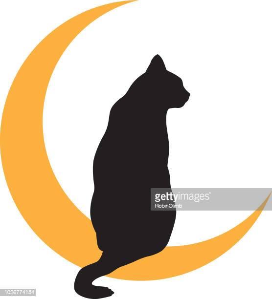 illustrations, cliparts, dessins animés et icônes de chat noir lune or icon - chat noir