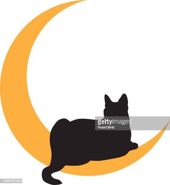 illustrations, cliparts, dessins animés et icônes de chat noir couché sur l'icône lune or - chat noir