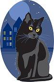 Black cat sitting outdoor