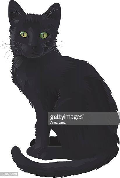 illustrations, cliparts, dessins animés et icônes de chat noir - chat noir