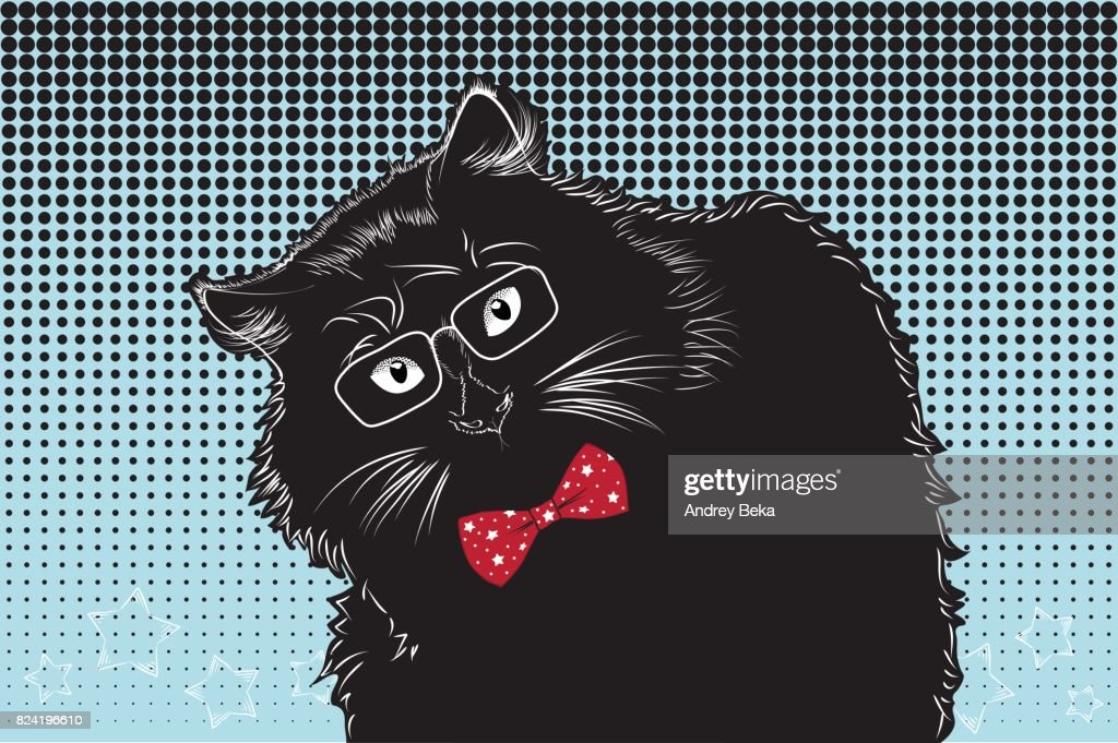 Black cat with glasses