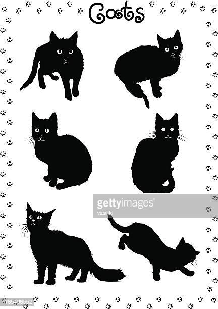 illustrations, cliparts, dessins animés et icônes de les chats noirs - chat humour