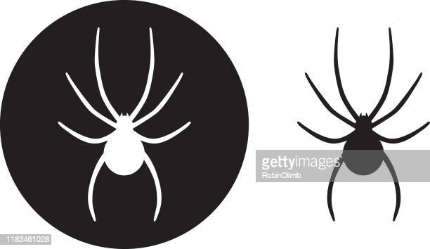 black circle spider icons - spider stock illustrations