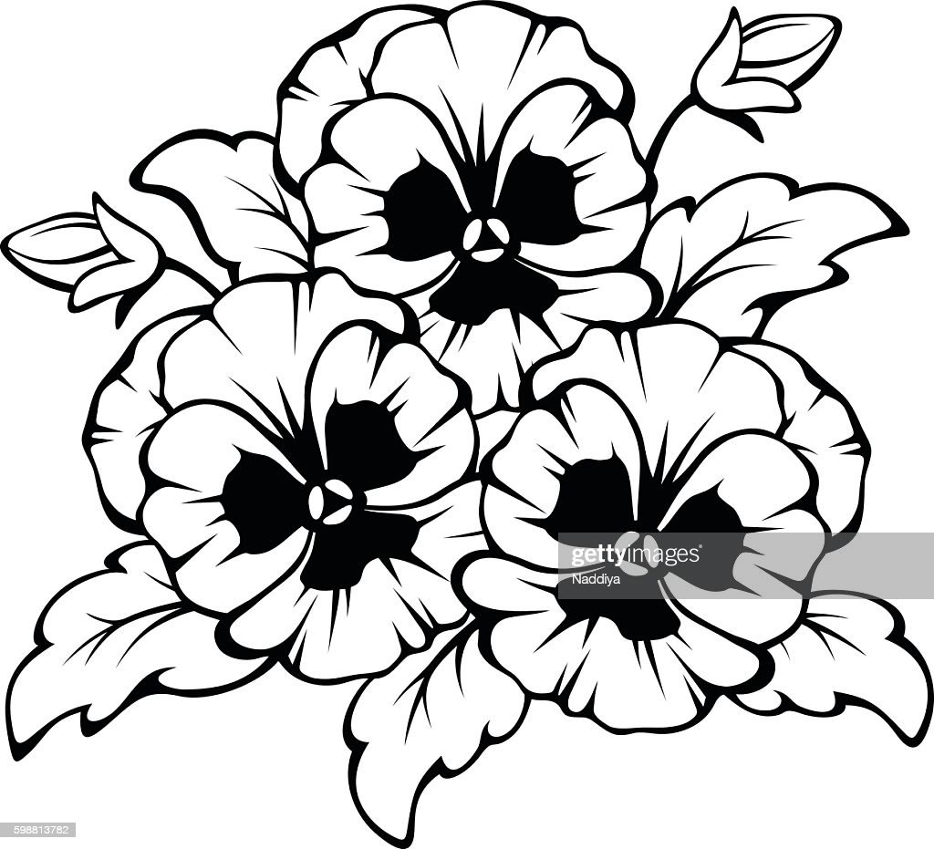 Black contour of pansy flowers. Vector illustration.