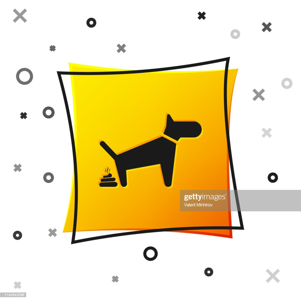 Black Dog pooping icon isolated on white background. Dog goes to the toilet. Dog defecates. The concept of place for walking pets. Yellow square button. Vector Illustration