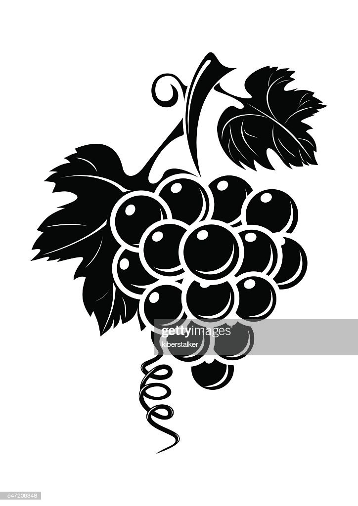 Black grapes icon isolated on white background
