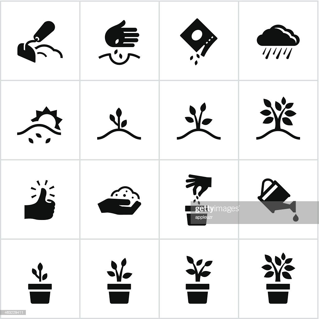 Black Growing Process Icons