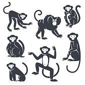 Black Monkeys Silhouettes Isolated on White.