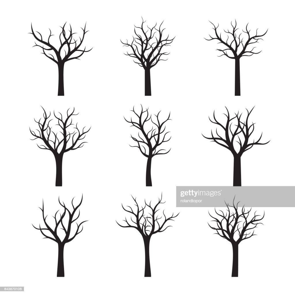 Black Naked Trees without leaves. Vector Illustration.
