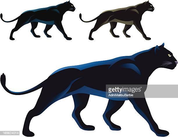30 Meilleurs Panthere Noire Illustrations Cliparts Dessins