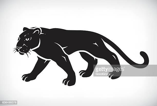 illustrazioni stock, clip art, cartoni animati e icone di tendenza di black pantera - pantera nera