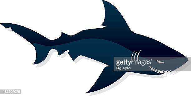 black shark image in white background - sharks stock illustrations