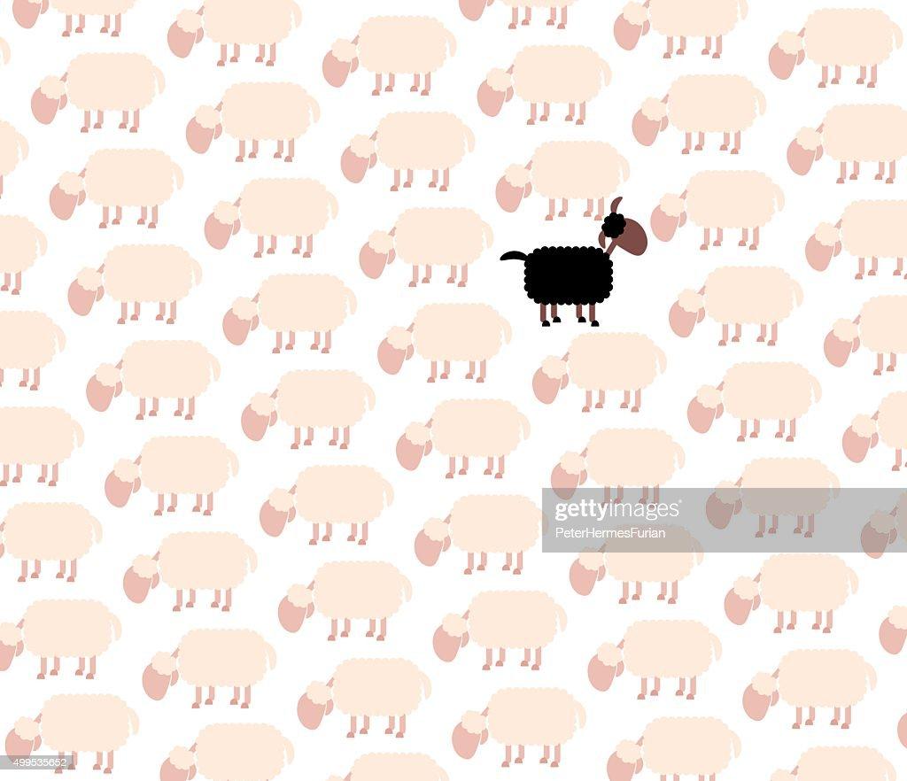 Black Sheep Among White Flock