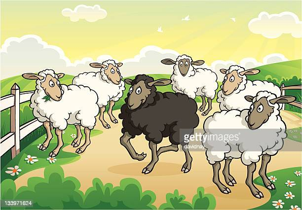 black sheep - sheep stock illustrations, clip art, cartoons, & icons