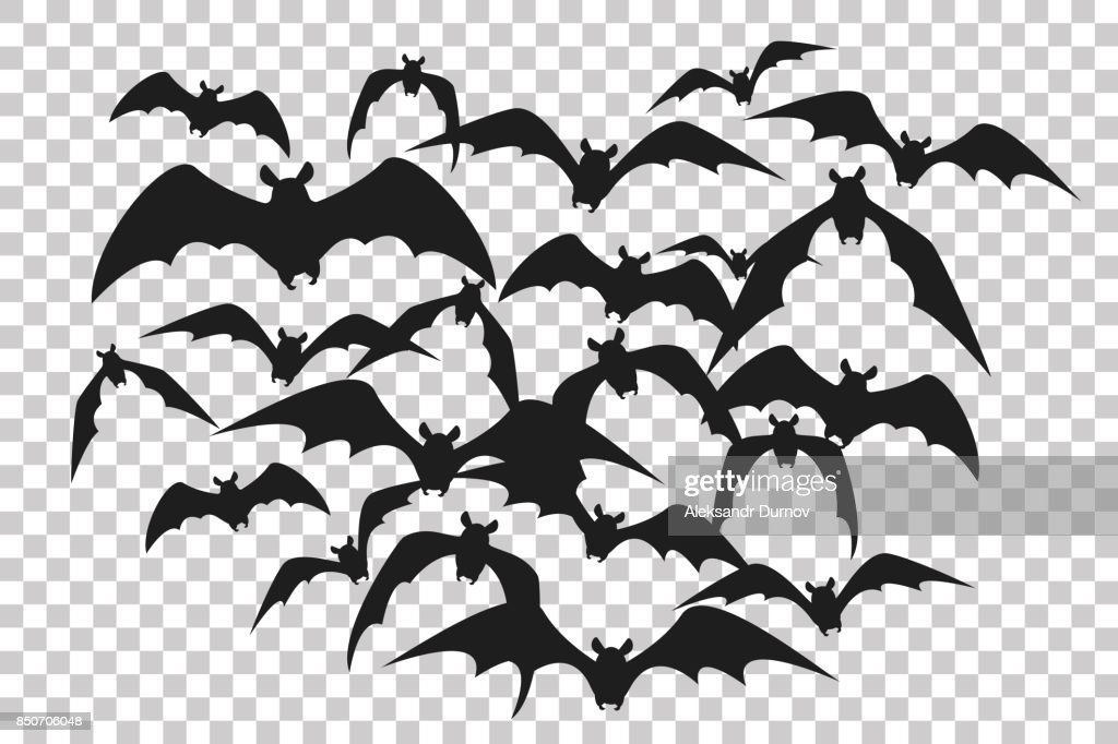 Black silhouette of flock of bats. Bunch of bats isolated on transparent background. Halloween traditional design element. Vector illustration