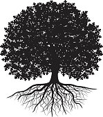 Black silhouette of oak tree with leaves and visible roots
