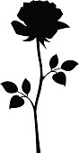 Black silhouette of rose with stem. Vector illustrations.