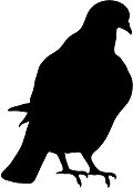 black silhouette of sitting dove on white background of vector illustration
