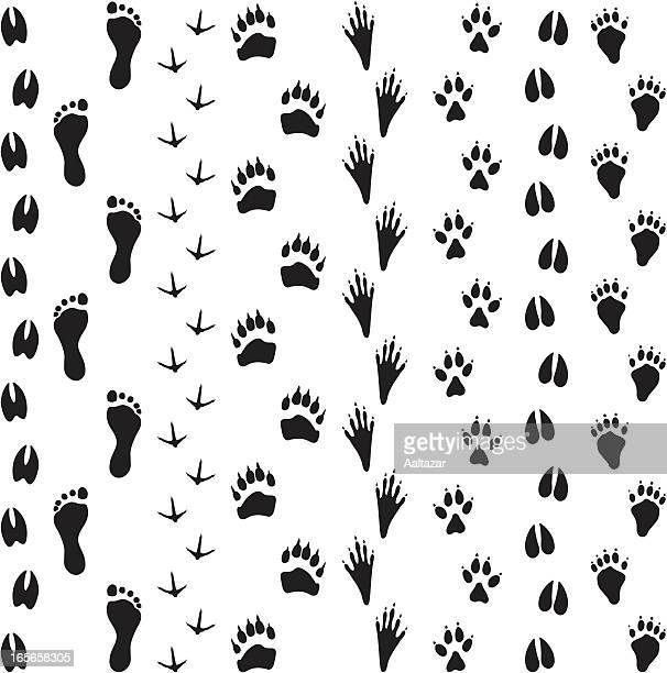 black silhouettes - animal tracks - animal track stock illustrations, clip art, cartoons, & icons