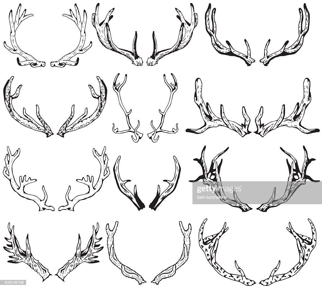 Black silhouettes of different deer horns. Hand drawn illustration.