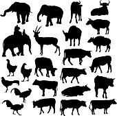 Black silhouettes of elephants, cows, bulls, chickens, deer on white