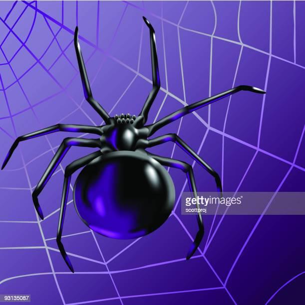 black spider - black widow spider stock illustrations, clip art, cartoons, & icons