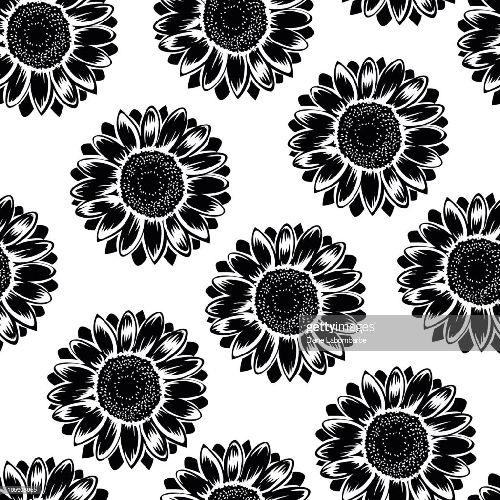 black sunflower pattern on white background vector id165908655