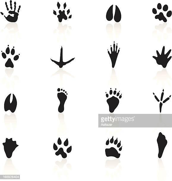black symbols - animal tracks - animal track stock illustrations, clip art, cartoons, & icons