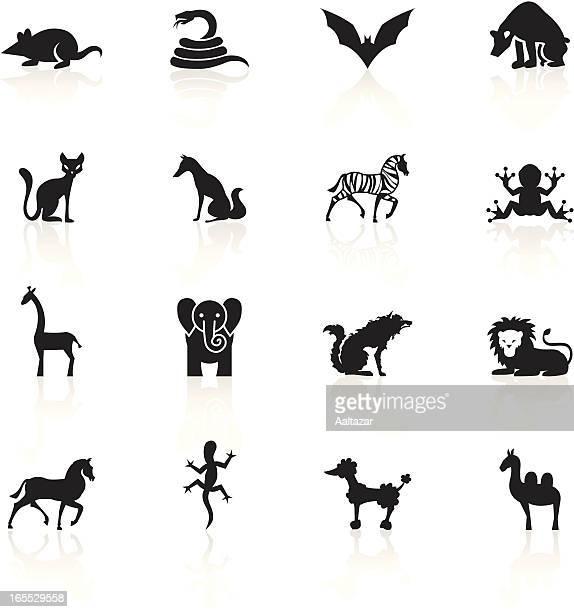Black Symbols - Animals