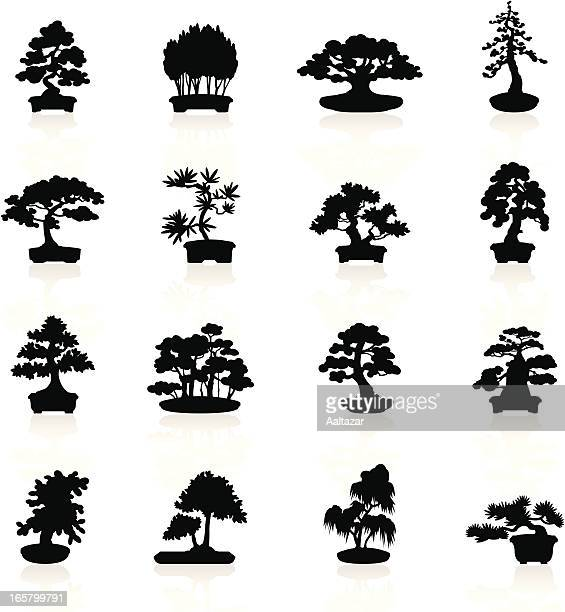 black symbols - bonsai trees - bonsai tree stock illustrations
