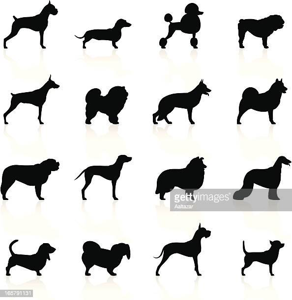 Schwarze Symbole-Hunde
