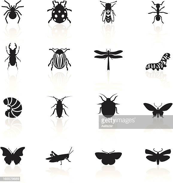 ilustraciones, imágenes clip art, dibujos animados e iconos de stock de negro símbolos-insectos - cucarachas