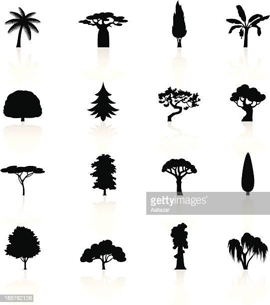 black symbols - trees - tropical tree stock illustrations