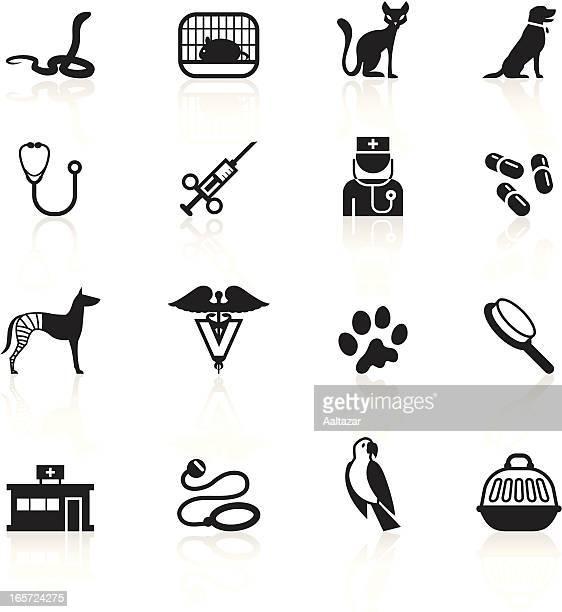 black symbols - veterinary - veterinarian stock illustrations, clip art, cartoons, & icons