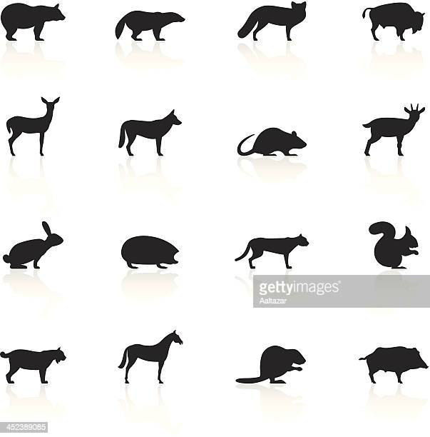 black symbols - wild animals - african buffalo stock illustrations, clip art, cartoons, & icons