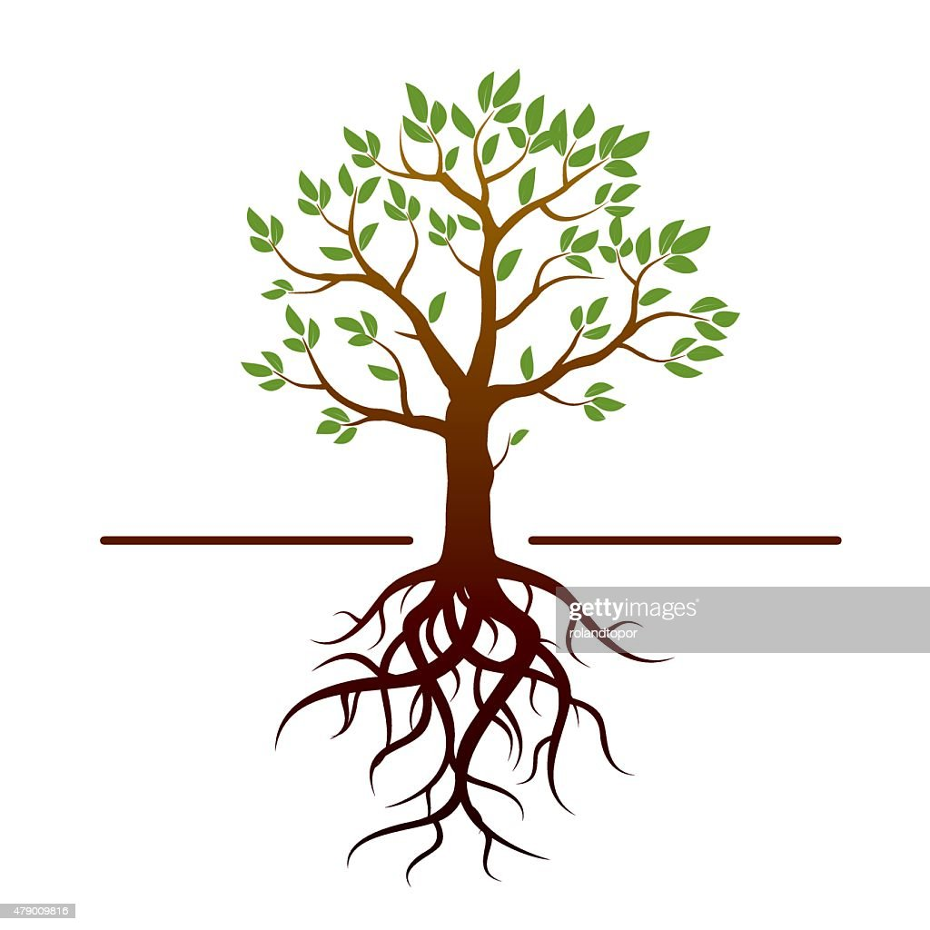 Black vector tree, green leafs and roots.