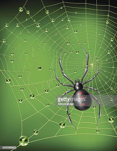 black widow spider and web - black widow spider stock illustrations, clip art, cartoons, & icons