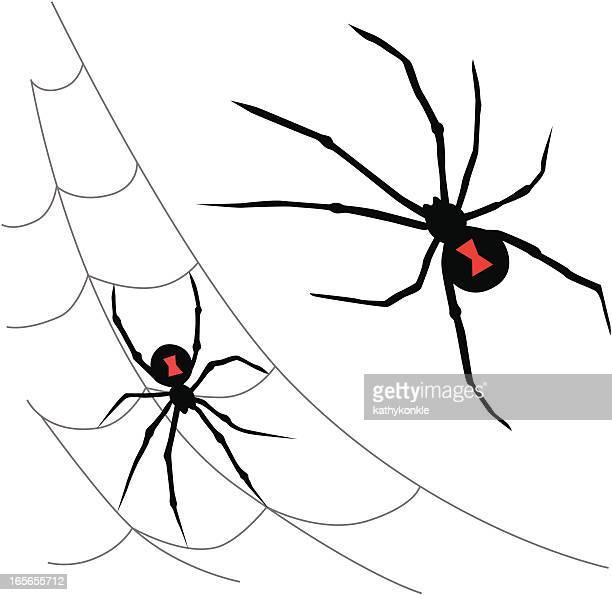 black widow spiders - black widow spider stock illustrations, clip art, cartoons, & icons