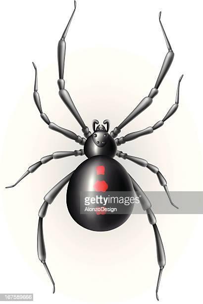 black widow - black widow spider stock illustrations, clip art, cartoons, & icons