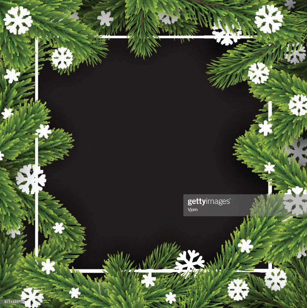 Black winter background with fir branches.