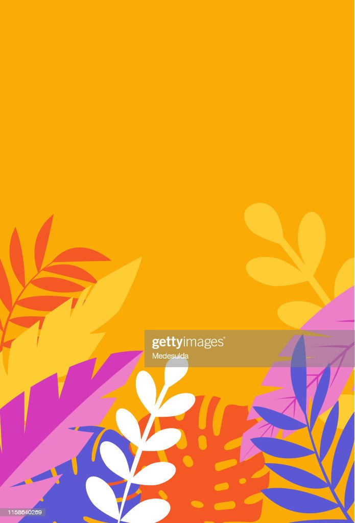Blank Invitation Card With Tropical Tree Leaves High Res