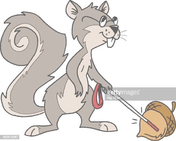 blind squirrel - blindness stock illustrations, clip art, cartoons, & icons