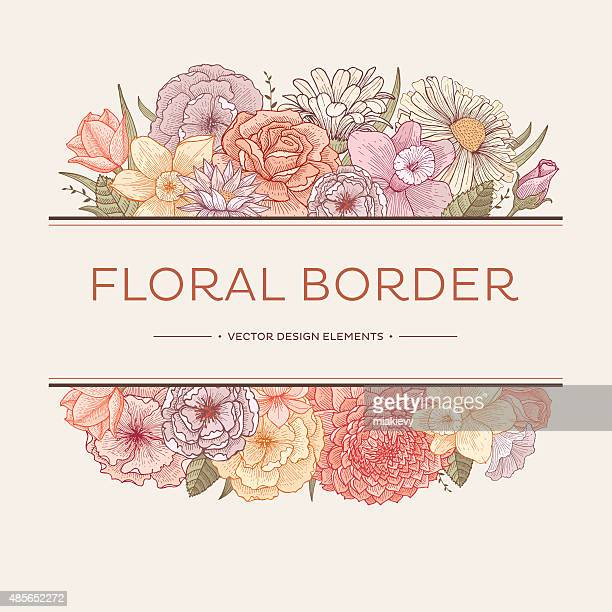 blooming borders - rose flower stock illustrations, clip art, cartoons, & icons