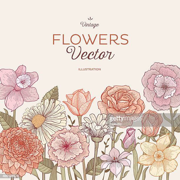 blooming flowers - flowerbed stock illustrations, clip art, cartoons, & icons