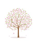Blooming tree on white background.