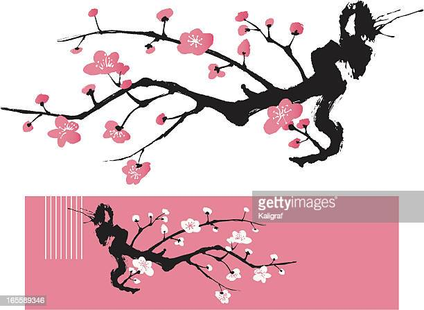 blossom tree - oriental style painting - flowering trees stock illustrations, clip art, cartoons, & icons