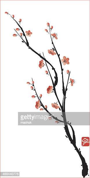 blossom - blossom stock illustrations