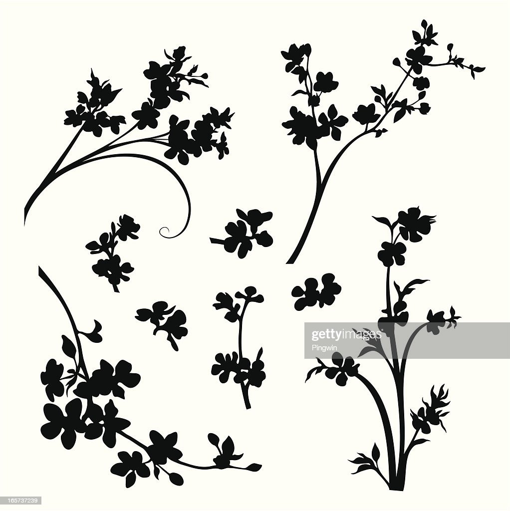 Blossomed branches and flower heads
